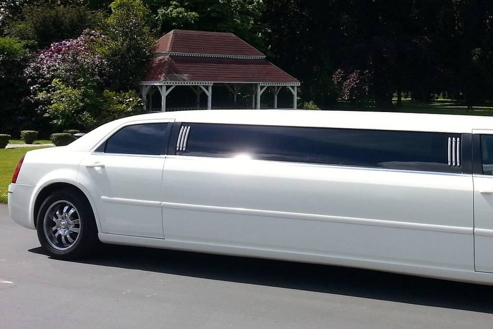 Limousine Silver