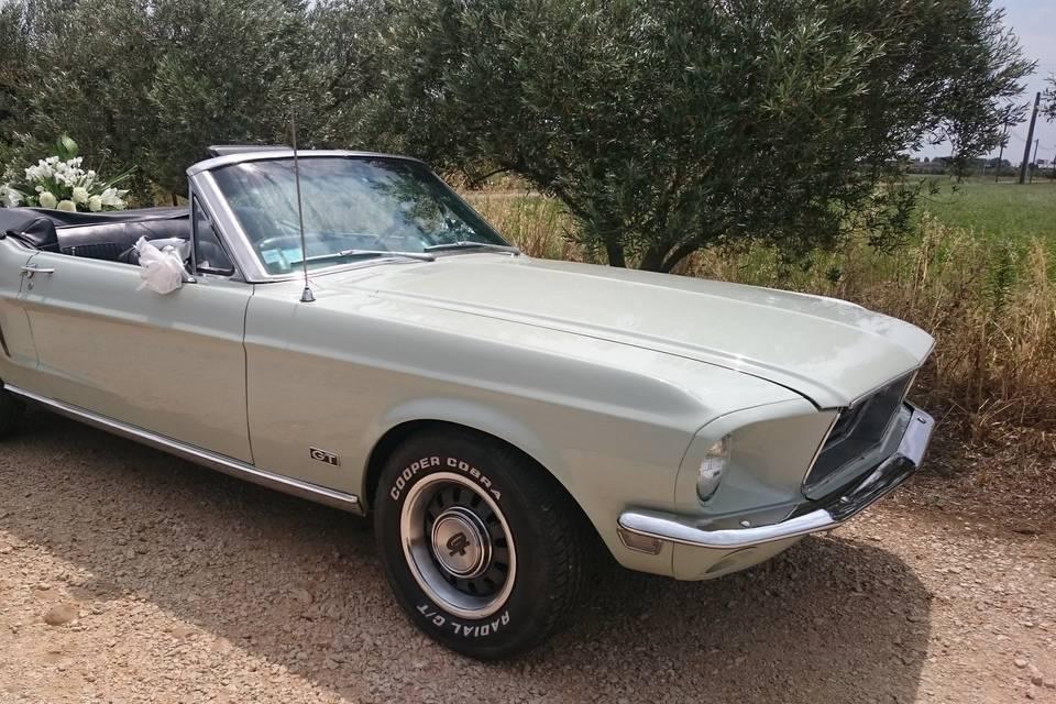 Mustangcab