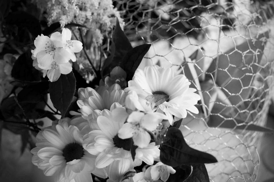 Grues et fleurs champêtres