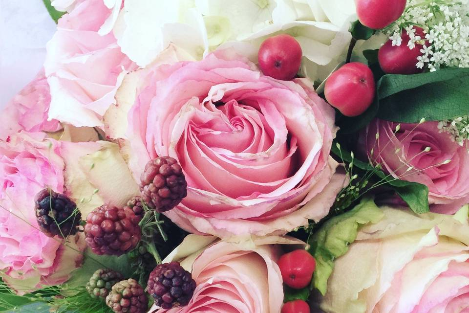 Fleurs des Fauvettes