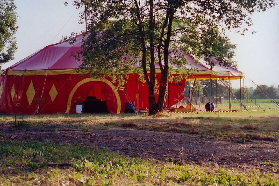 Planche de Cirque