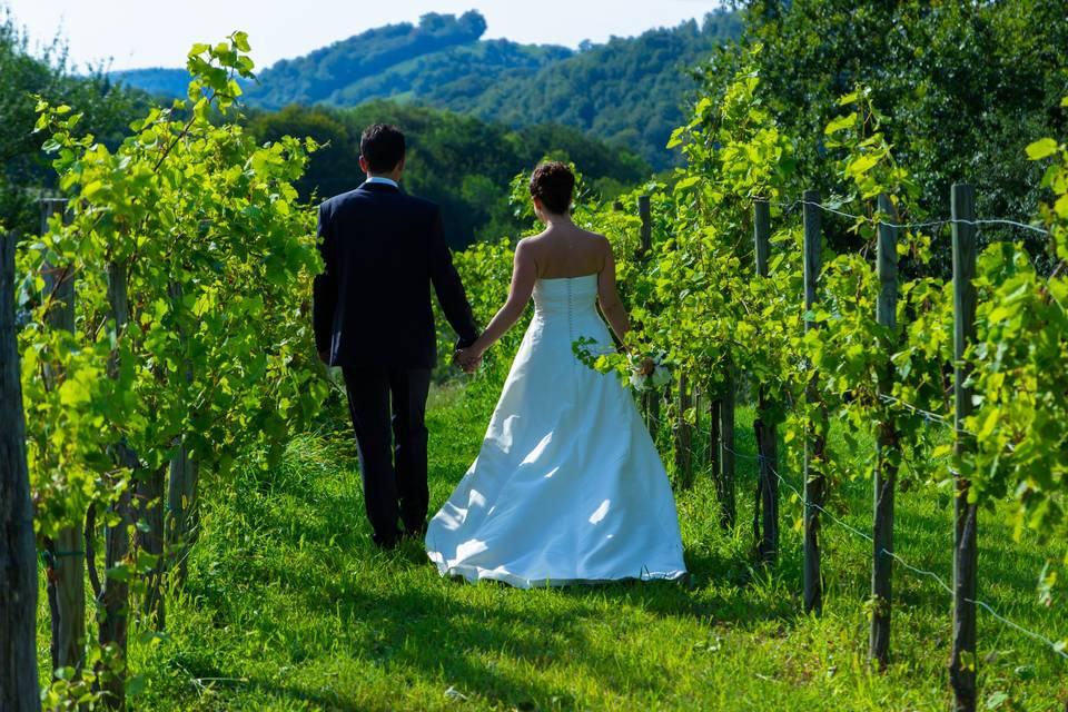 Pose mariés vigne