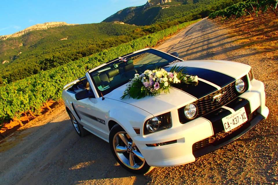 Ford mustang GT V8 Cabriolet